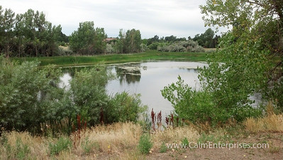 IMG_20130807_094809_882 4x6D Cherry Creek SP Pond off Pope Trail