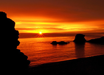 Gooseberry Sunrise