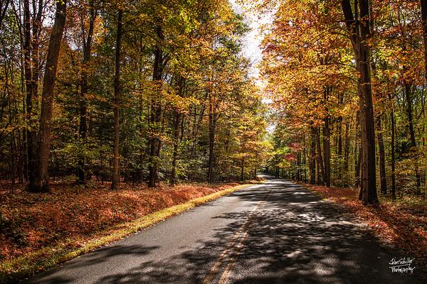 Maryland Autumn