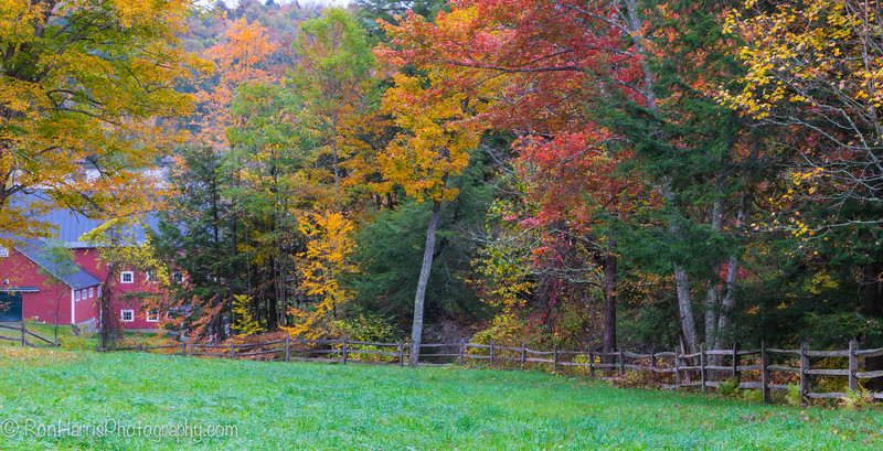 Vermont fall colors....in the rain.