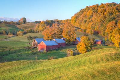 American Morning || Jenne Farm, Reading, VT