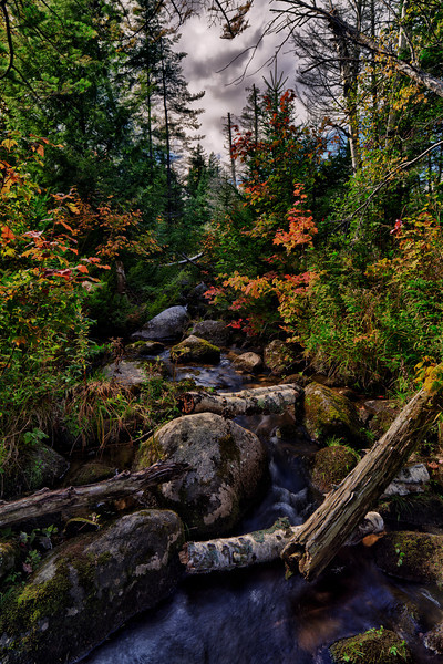 Mountain creek - Groton, VT