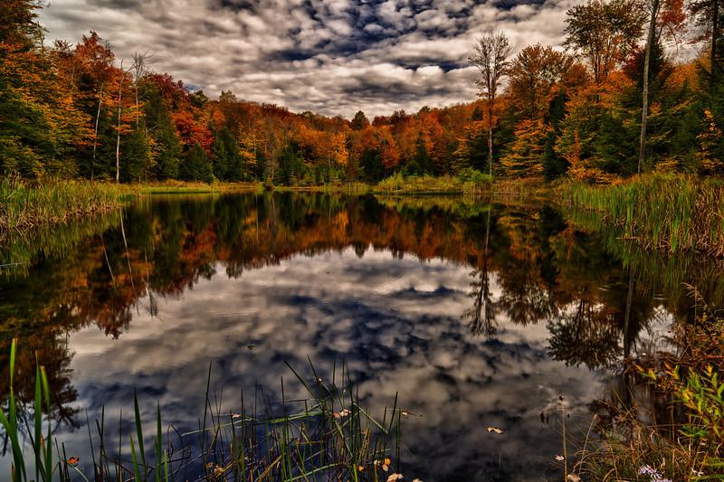 Fire Pond, 2012 - Stowe, VT