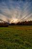 Wiessner Woods - Sunset, October 21, 2011
