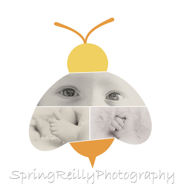Hailey's Baby Bee Collage