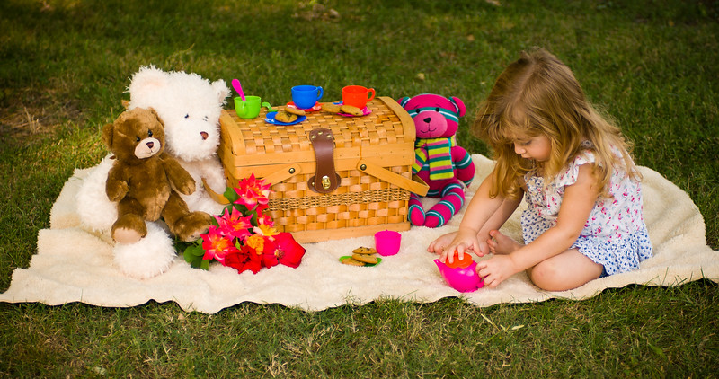Kaydance Sneed, cookies, girl, party, picnic, picnic basket, portrait, tea, tea party, teddy bear, portrait session