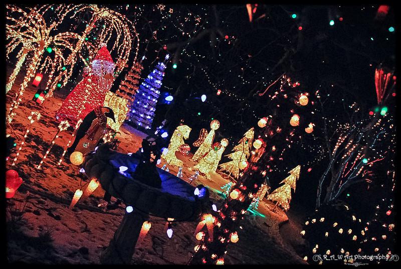 Christmas Lights-1