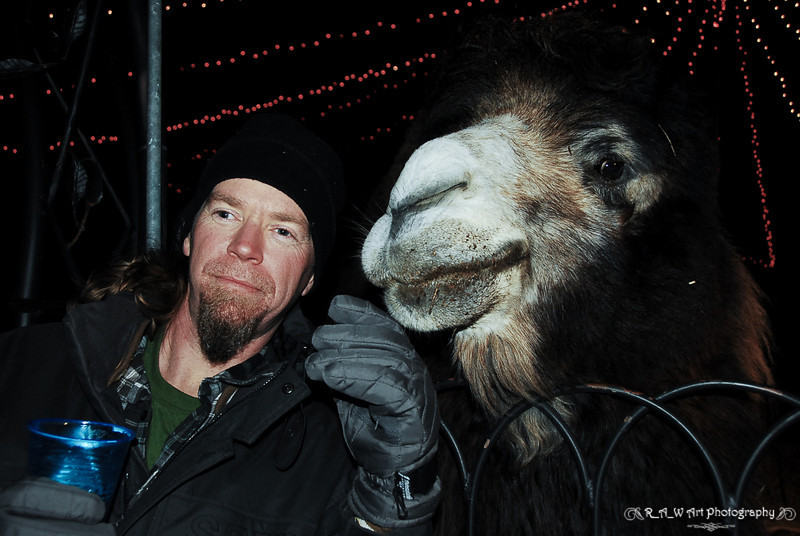Sean and the Camel-1