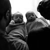 Aria, Carter + Alia & Chris Mccants - Twin Newborn Photography