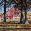 Red Barn Farm