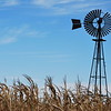 Windmill standing alone in the middle of a cornfield. Located in northwest Ohio in the fall of 2008.