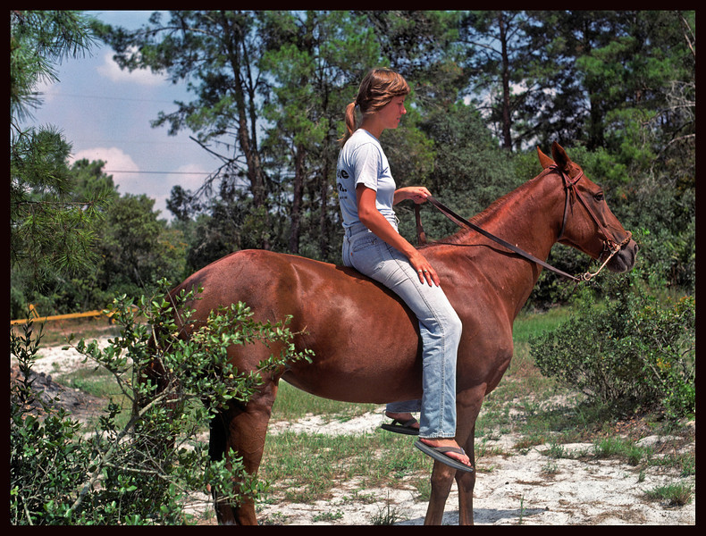 The Equestrian - Julie E on Heidi.