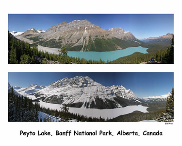 Peyto Lake in Summer and Winter