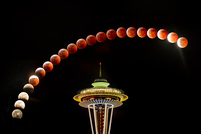 Lunar Eclipse - 2019