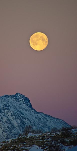 Winter moon over Landegode
