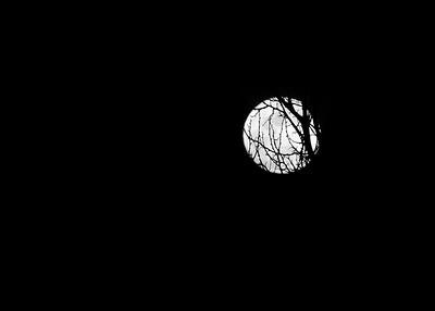 Pretty moon playing hide and seek