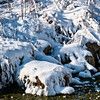 Fresh snow, Pine Creek, near Maiden Rock, Wisconsin