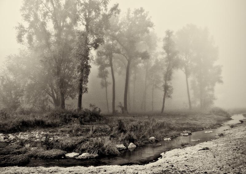 Pine Creek (south of Maiden Rock, Wisconsin)