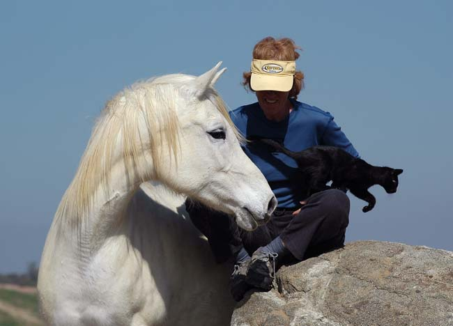 Laurie Taylor photo Feb '08, Ember, Taran-kitten at 4 months old.