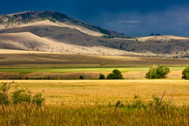Light before a Storm on Southwestern Montana farms with Gallatin mountain range and national forest in the distance. Grain and Hay farming lines the valley between the Gallatin mountain range and the Absaroka mountain range along scenic highway US 89.