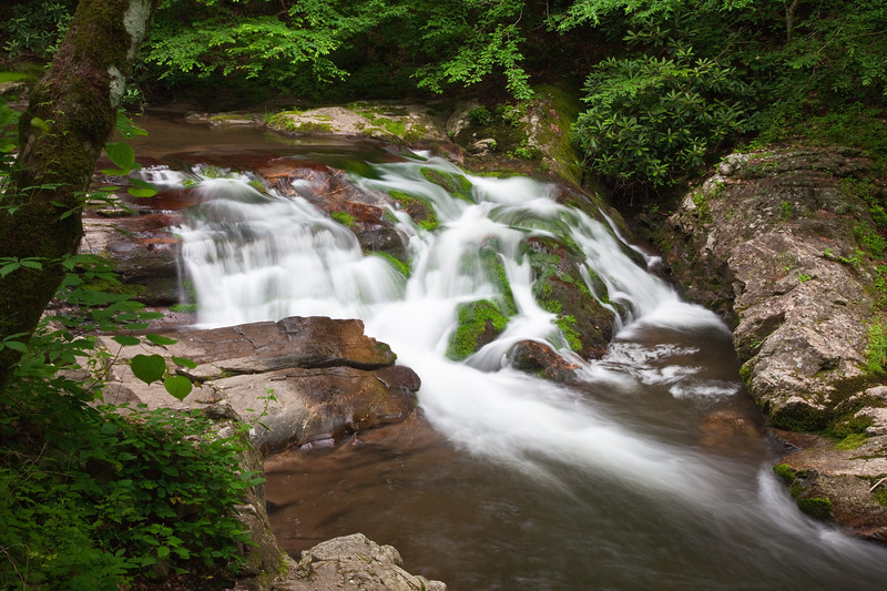 Rapids and waterfalls with lichen covered rocks on Laurel Creek near Cades Cove in the Great Smoky Mountain National Park on the Tennessee side, on an overcast summer day.