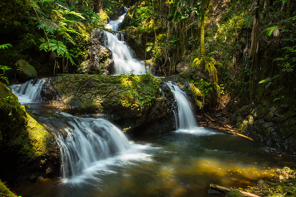 Onomea falls and the lush green tropical rainforest.
