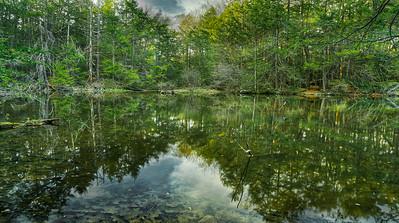 Roaring Brook Nature Center 2