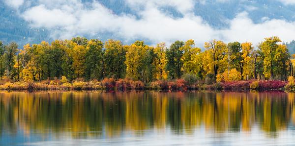 Autumn relfections