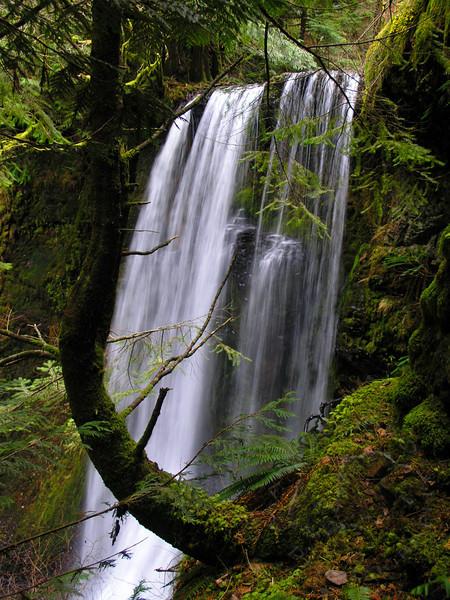 Ecola Falls, Columbia River Gorge, Oregon 8mm (16mm equiv) f/2.8 1/13 sec