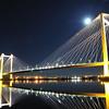 Pasco Cable Stay Bridge