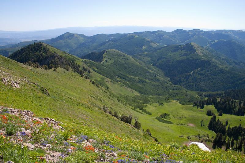 Upper Basin.
