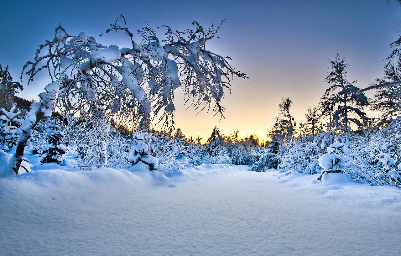 Vinterstemning i Bontveitdalen