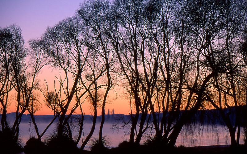 Holden's Bay, Lake Rotorua, July 1999