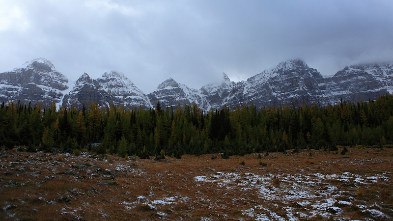 Larch Valley with a backdrop of the same mountains that border Moraine Lake