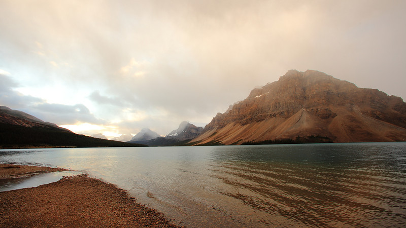 A foggy morning by the shore of Bow Lake