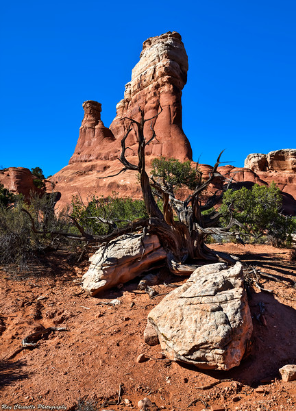 Broken Arch Loop Trail