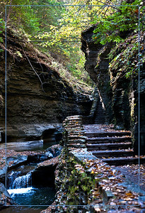 Watkins Glen Gorge - this little stream has cut a slice through the mountains in Western New York. The CCC built the stone walls, tunnels and steps that form this trail back in the first half of the last century.