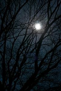 Ice Rings & Winter Moon