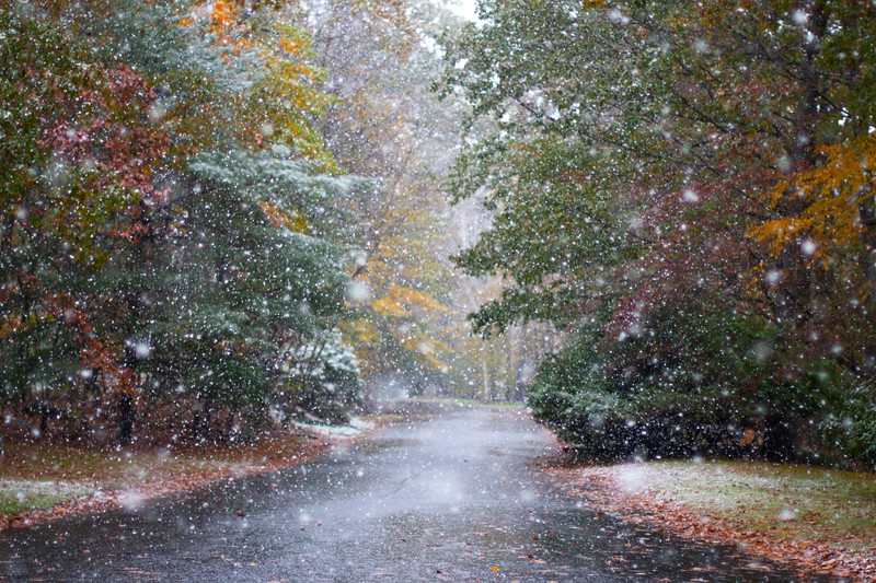 Dwayne Rd during late October snow.