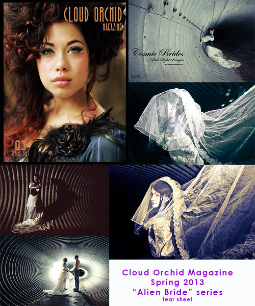 Spring 2013 EDITION - Cloud Orchid Magazine - this is my tear sheet collage.  We featured the Alien Bride series! :) April 2013.