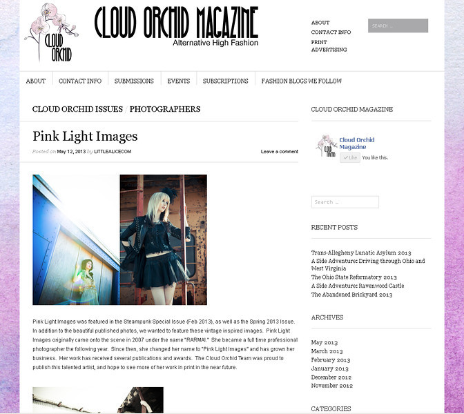 Cloud Orchid Magazine - blog feature on the vintage-type images I did with a group of photographers.  Featured May 2013.