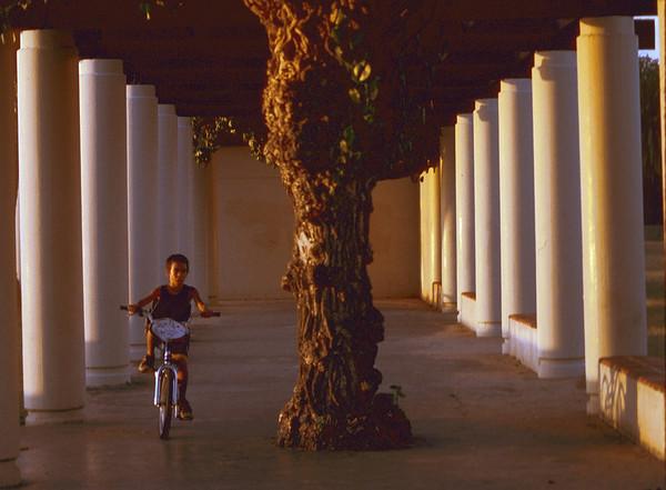 Hawaii Bicyclist