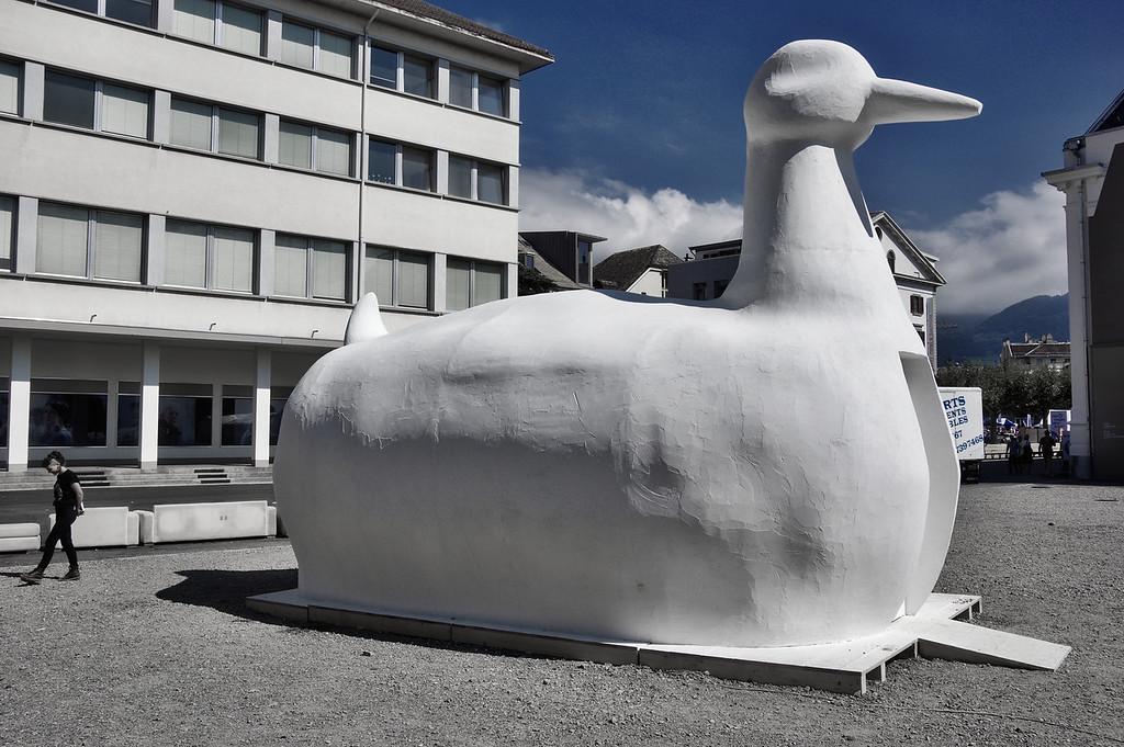 Duck | Festival #Images @ Vevey