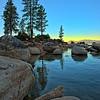 Tahoe Trees_2166