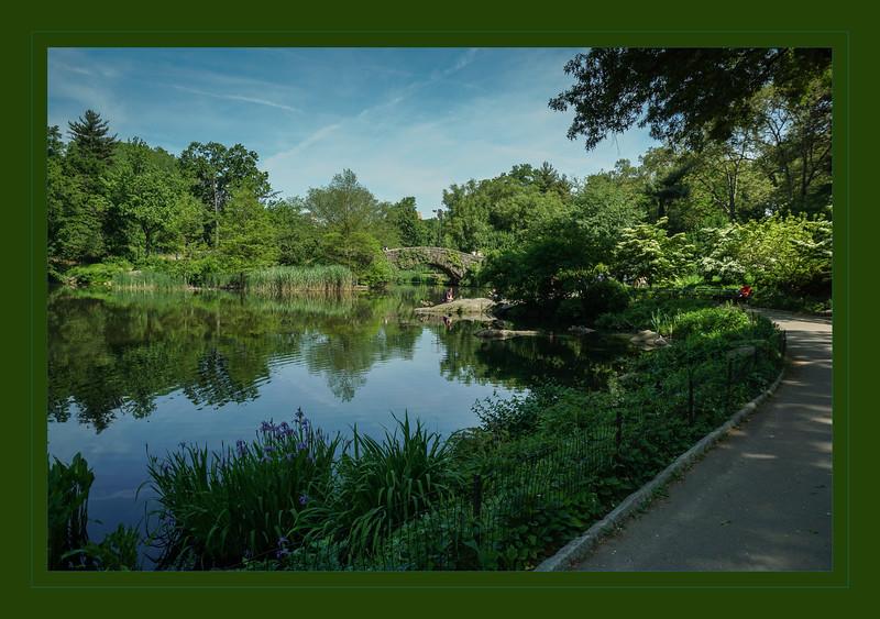 central park-05786