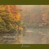 Foggy Fall-1876