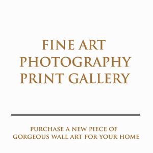 Luxury Fine Art Limited Edition Prints/Wall Art by gavin conlan photography Ltd