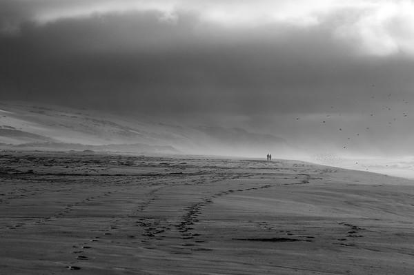 Guadalupe Dunes CA