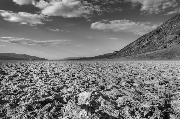 Looking north from Bad Water: Death Valley NP