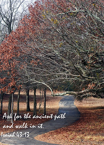 The Ancient Path